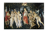Primavera Prints by Sandro Botticelli