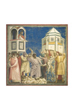 Massacre of the Innocents Prints by  Giotto di Bondone