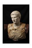 Bust of Augustus (after Augustus of Prima Porta) Prints