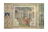 Christ among the Doctors in the Temple Posters by  Giotto di Bondone