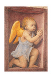 Little angel worshipping Prints by Bernardino Luini