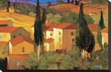 Terracotta Vista Stretched Canvas Print by Philip Craig