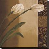 Tulip Pair Stretched Canvas Print by Emmanuel Cometa