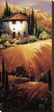 Golden Tuscany Stretched Canvas Print by Nancy O'toole