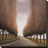 Forest Road I Stretched Canvas Print by Taman Van Scoy