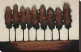 Nine Trees Stretched Canvas Print by Rita Vindedzis