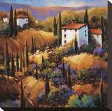 La Toscana e La Vita Dolce Stretched Canvas Print by Nancy O'toole
