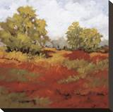 Scarlet Fields I Stretched Canvas Print by Maija Baynes