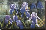 Iris Garden Stretched Canvas Print by Fangyu Meng