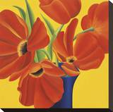 Sunny Tulips Stretched Canvas Print by Sarah Horsfall