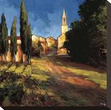 Pathway to the Villa Stretched Canvas Print by Philip Craig