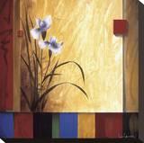 Meditation Stretched Canvas Print by Don Li-Leger