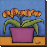 Orquidia Laranja Stretched Canvas Print by H Alves