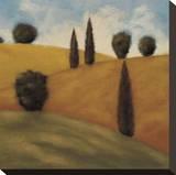 Restful Stretched Canvas Print by Rita Vindedzis