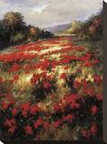 Carmine Meadow Stretched Canvas Print by  Leila