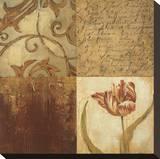 Tulip Manuscripts II Stretched Canvas Print by Elizabeth Jardine