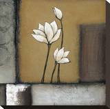 Magnolia Rustique I Stretched Canvas Print by H. Alves