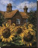 Cottage of Delights I Stretched Canvas Print by Malcolm Surridge