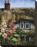 Cottage of Delights II Stretched Canvas Print by Malcolm Surridge