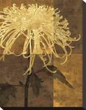 Golden Mums I Stampa trasferimenti su tela di Keith Mallett