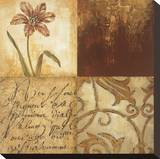 Tulip Manuscripts I Stretched Canvas Print by Elizabeth Jardine