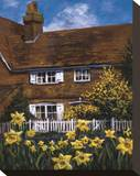 Cottage of Delights III Stretched Canvas Print by Malcolm Surridge