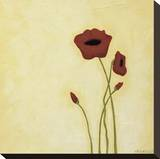 Summer I Stretched Canvas Print by Rita Vindedzis