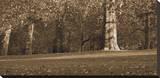Hyde Park Afternoon II Stretched Canvas Print by Boyce Watt