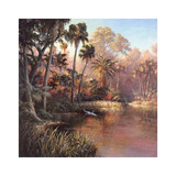 Myakka Sunset Posters by Art Fronckowiak