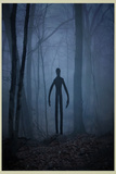 Slender Man In Woods Poster Posters