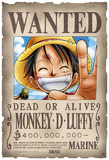 One Piece - Parchemin sous boite Luffy Posters