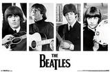 The Beatles Portraits Prints
