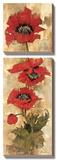 Strand of Poppies II Art by Elizabeth Jardine