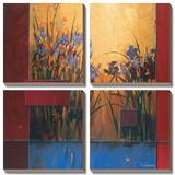Iris Sunrise Prints by Don Li-Leger