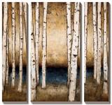 Birch Landing Posters by Patrick St. Germain