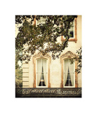 Savannah Charm I Prints by Irene Suchocki