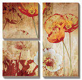 Poppy Heart I Posters by Tandi Venter