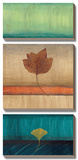 Spring Leaves II Posters by Laurie Fields