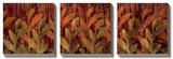 Coral Fields Prints by Elizabeth Jardine