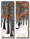 Snowfall II Prints by Burney Lieberman