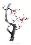 Plum Blossom Branch I Poster af Nan Rae