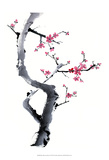 Plum Blossom Branch I Poster by Nan Rae