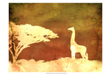 Safari Sunrise IV Prints by Pam Ilosky