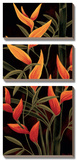 Sunburst Blossoms Print by Yvette St. Amant