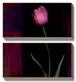 Red Tulip II Posters by Rick Filler
