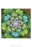 Fractal Blooms I Prints by James Burghardt