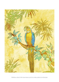 Macaw on Branch I Prints by Catherine Kohnke