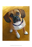 Puggle Bright Delight Posters by Robert Mcclintock