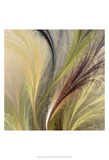 Fountain Grass I Prints by James Burghardt