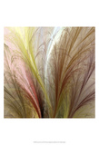Fountain Grass II Posters by James Burghardt